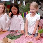 Quintilian Vegetable garden